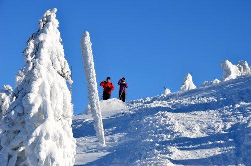 Durch die schönsten Teile des Riesengebirges mit Langlaufskiern oder Skialpen - Luční bouda - Klínovky