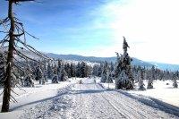 Zimní výlet Krkonoše - cesta pod Petrovkou