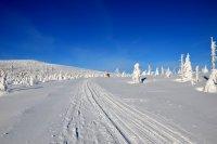 Zimní výlet Krkonoše pod Petrovkou