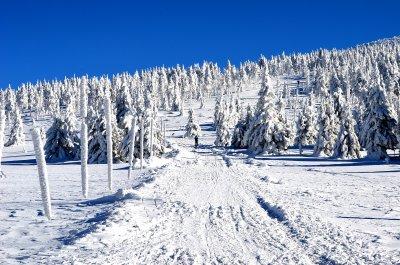 TOP 3 smukkeste vinterture omkring Špindlerův Mlýn og Giant Mountains