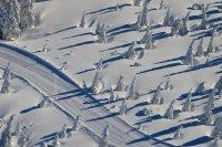 Běžecké trasy a okruhy na Pláni