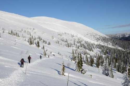 5. TIPP auf Skialpy von Pec pod Sněžkou Modrý dol durch Výrovka und zurück nach Pec pod Sněžkou