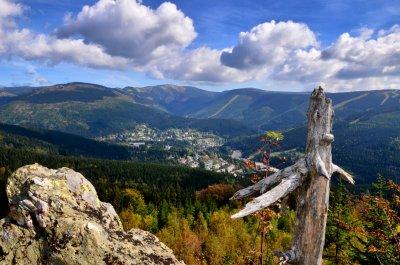 Bear Way - ścieżka dydaktyczna z umieszczonymi informacjami o Medvědín