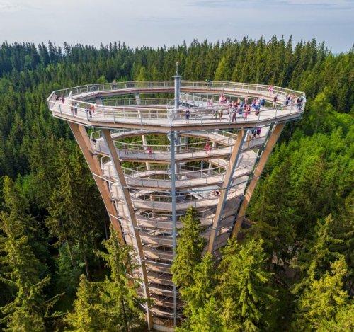 Treetop trail - Janské Lázně