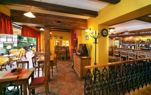 Restaurant Bakchus - Hotel Erika - Špindlerův Mlýn - Riesengebirge