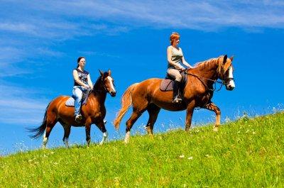 Turistická jízdárna - koně - Kněžice