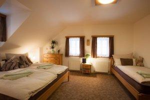 Accommodation Residence Buffalo - Špindlerův Mlýn - room - Krkonoše