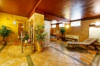 Alpský hotel - Špindlerův Mlýn - wellness - Krkonoše