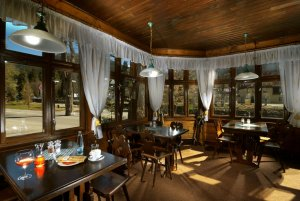 Accommodation - Hotel Hubertus- Špindlerův Mlýn - Krkonoše - restaurant