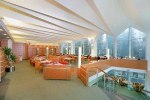 Hotel Montana - Špindlerův Mlýn - restaurant
