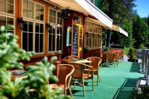 Accommodation - Hotel Diana - Špindlerův Mlýn - Krkonoše - restaurant