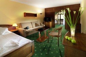 Accommodation - Wellness Hotel Windsor - Špindlerův Mlýn - Krkonoše