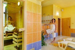 Pension Elisabeth - Špindlerův Mlýn - sauna