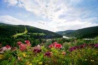 Accommodatie - Pension Monte Rosa - Spindleruv Mlyn - Reuzengebergteše