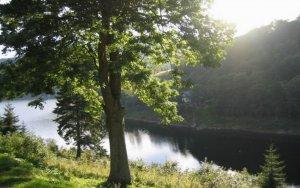 Pension Fontana Špindlerův Mlýn - Labská přehrada